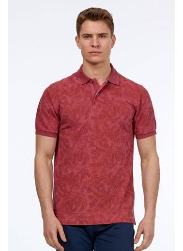 Hemington Polo Yaka Tişört Pembe